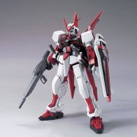 HG R16 M1 Astray