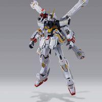 Metal Build Crossbone Gundam X1