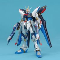 MG ZGMF-X20A Strike Freedom Gundam Extra Finish Ver.