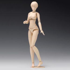1/12 Movable Body Female Type [Ver.B] Model Kit